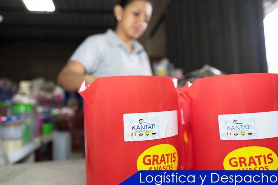 logistica-y-despacho4